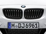 Kentra BMW F22 Performance grill 51712336815-816 1